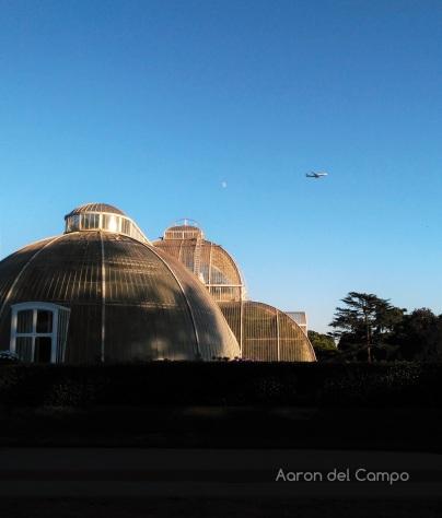 Si hay que ponerle una pega a Kew Gardens, es el gran tráfico aéreo de la zona.